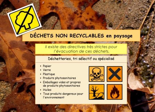 Gestes-écologiques2-1