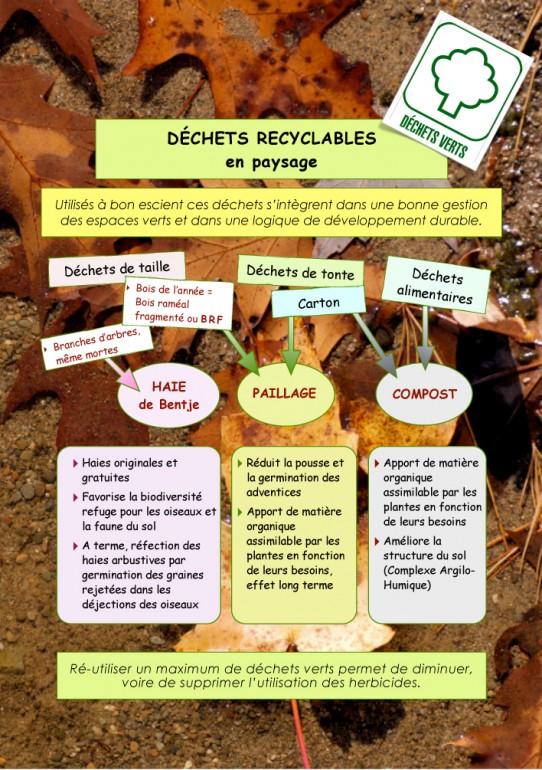 Gestes-écologiques2-2