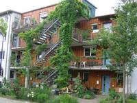 Pieds d'immeubles végétalisés - Fribourg