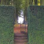 La taille structure le jardin