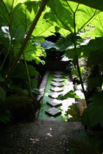 Jardins de Kerdalo - Côtes d'Armor