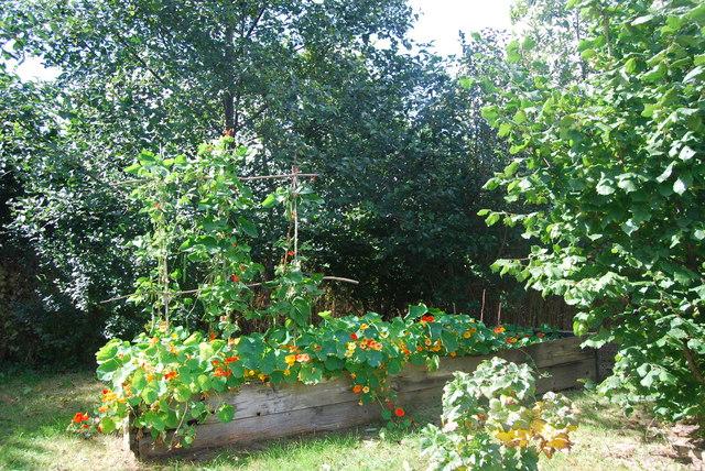 Ferme du Bec Hellouin – Site expérimental et permaculture