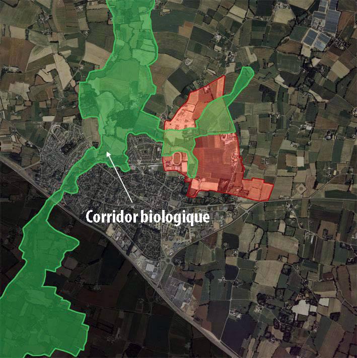 Corridor biologique - Ville de Pacé I 35